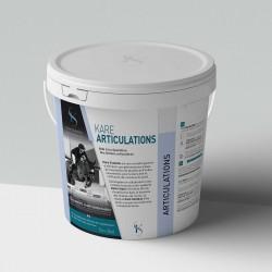 ARTICULATIONS - KARE Solution