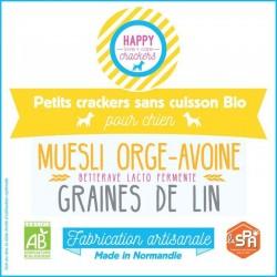 Beet dog biscuit – organic...