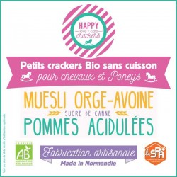 Biscuit cheval pomme - Bio...
